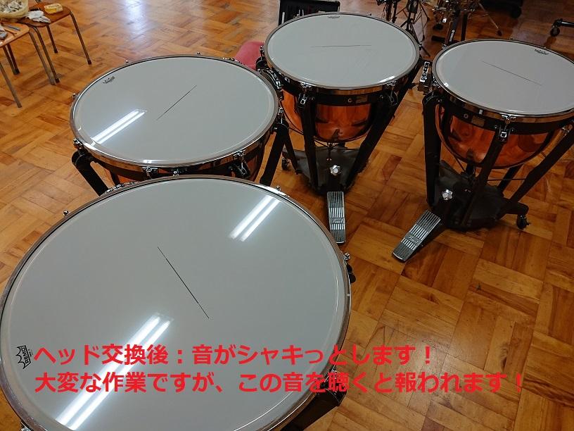 DSC 1890 (1)