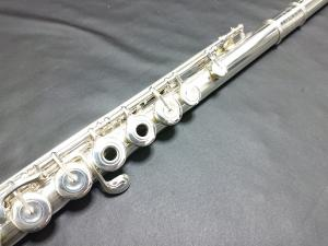DSC 0566 (1)
