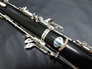 DSC 0581 (1) (1)