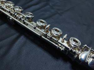 DSC 0650