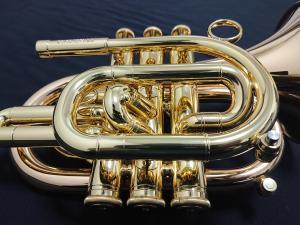 DSC 1523